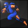 Ninja Ryuuken Den