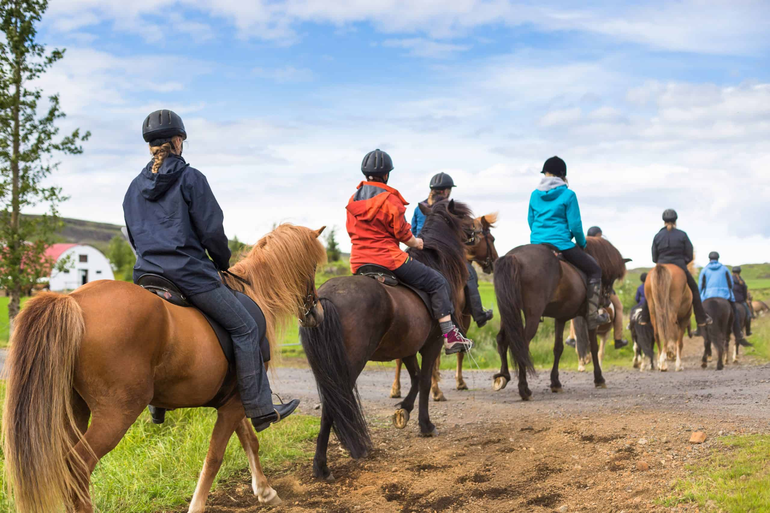 Group of People Horseback riding in Iceland
