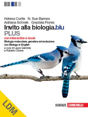 curtis_plus_biobol_ldm.png