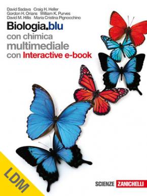 copertina-farfalle-ldm.png