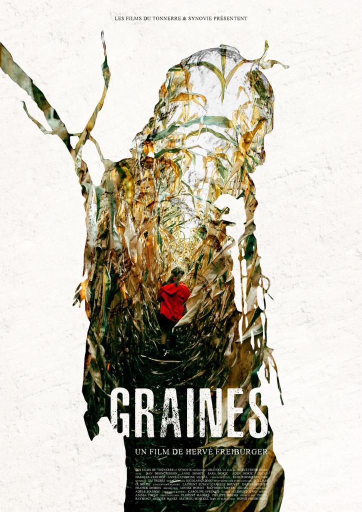 graines.jpg