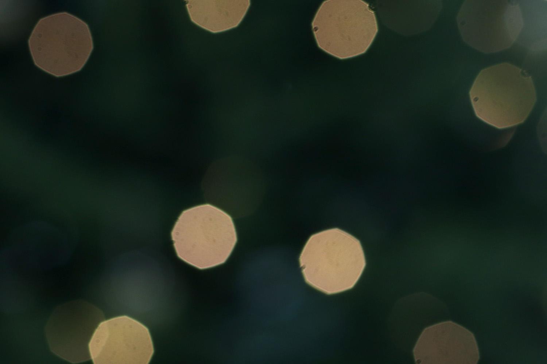 designcentre_christmas_green_store.jpg#asset:3157
