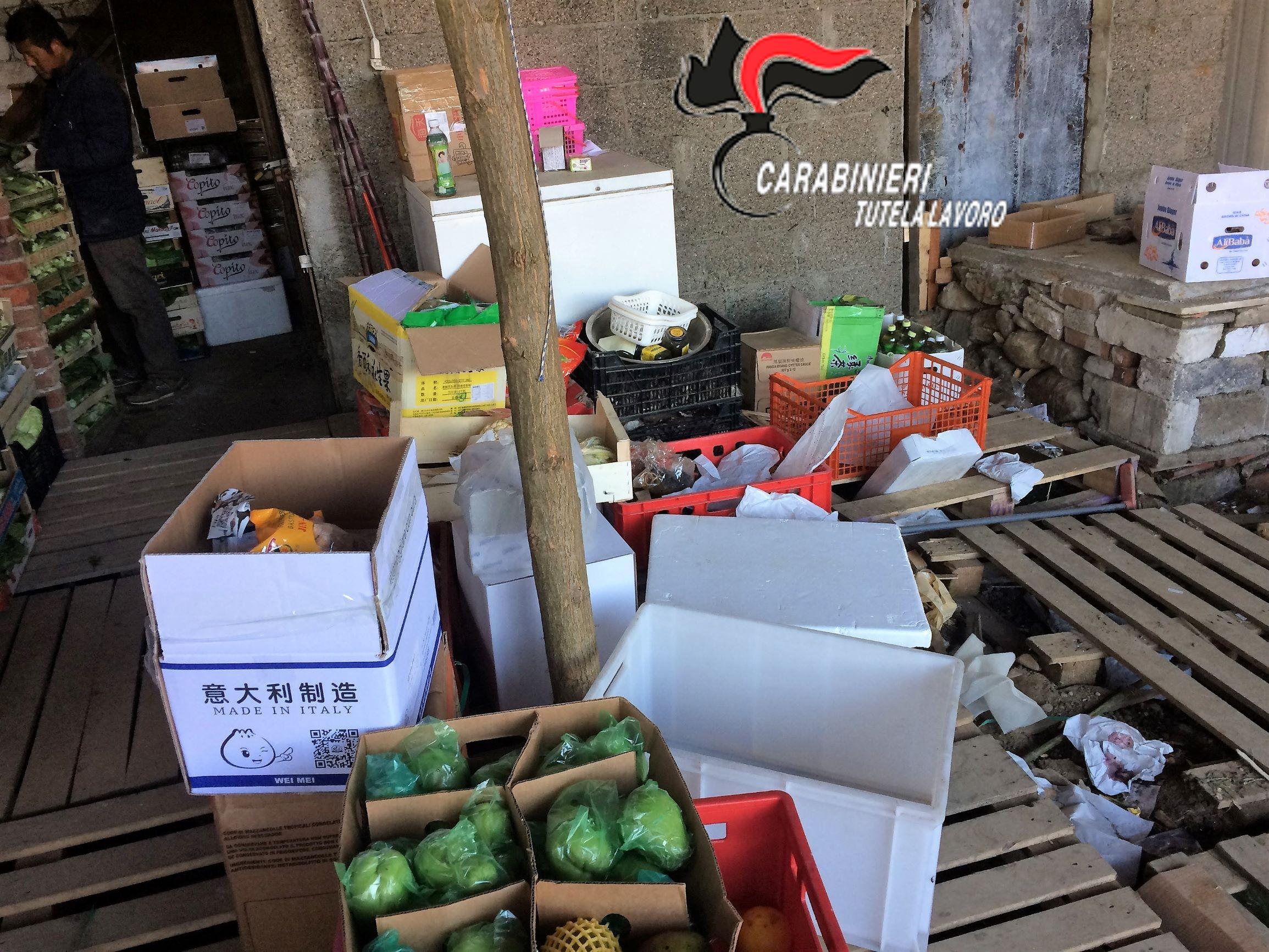 Topi morti nelle scatole di frutta e verdura. Arrestato a ...