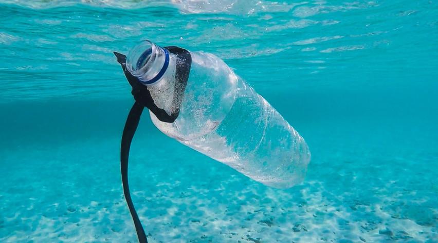 Poltrona Bottiglie Di Plastica.Meno Bottiglie Di Plastica Per Un Futuro Migliore