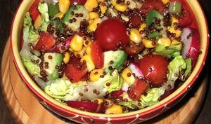 Salade au quinoa rouge