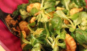 Salade estivale de gnocchis au fromage et pesto rosso