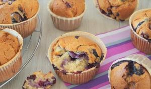 Le muffin aux myrtilles