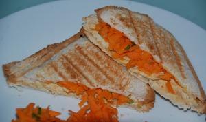 Croque carotte et poulet tandoori