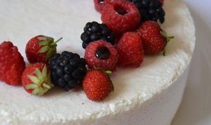 Entremets coco, insert aux fruits rouges et confiture de fraises