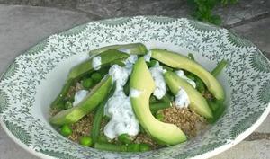 Salade Phedra