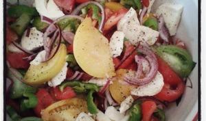 Salade de tomates en couleur , oignons rouges et piment verts à la mozzarella
