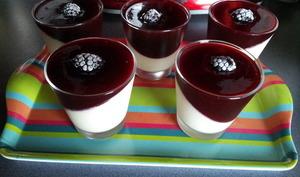 Panacotta à la vanille et son coulis de prunes rouges