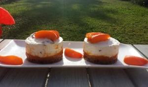 Cheese cake abricots