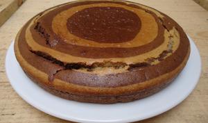 Gâteau yaourt vanille et chocolat