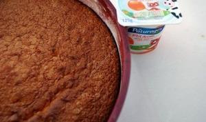 Gateau au yaourt saveur abricot au thermomix facile et rapide