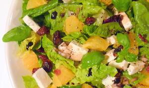 Salade Feta, orange et cranberries