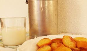 Mini madeleines glacées au citron de Christophe Michalak