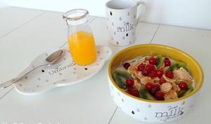 Yaourt aux kiwis et groseilles pour le petit-déjeuner