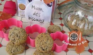 Cookies Avoine, Epeautre, Sarrasin et leurs 2 Chocolats