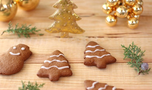 Biscuits pains d'épices et chocolat