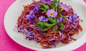 Salade de chou rouge, radis noir et carottes
