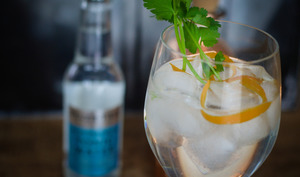 Gin tonic maison