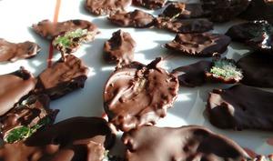 Feuilles de Menthe Cristallisées au Chocolat