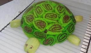 Gâteau tortue au chocolat et à la poire