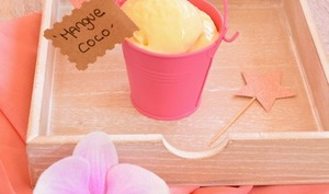 Yaourt glacé à la mangue et au lait de coco