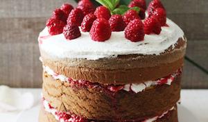 Chiffon Cake aux Framboises et Sirop de Framboises-Rose