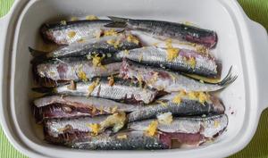 Sardines citron anis