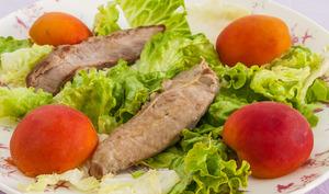 Filets de canard et abricots en salade
