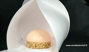 Cheesecake aux deux façons à l'abricot