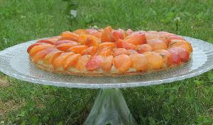 Tarte à l'abricot, compotée de rhubarbe