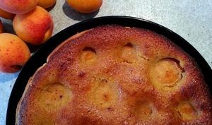 Tarte aux abricots, amandes et noisettes