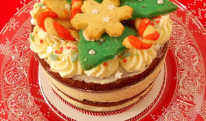 Naked cake de Noël chocolat, épices et Tonka