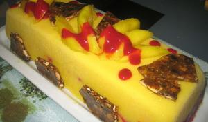 Bûche glacée mangue, framboises et nougatine