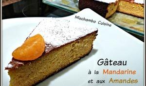 Gâteau à la mandarine et aux amandes