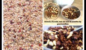 Granola chocolat, noix de coco & noisettes