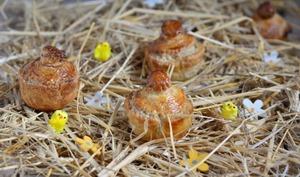 Pâté de Pâques berrichon