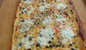 Pizza courgette mozzarella