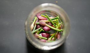 Boutons de fleurs de ciboulette au vinaigre