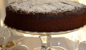 Gâteau au chocolat en poudre Criolo