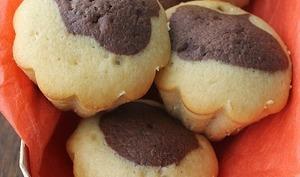 Gâteau bicolore au chocolat