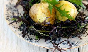 La pomme de terre vapeur beurre à la truffe