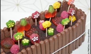 Cake au chocolat d'après Claire Damon