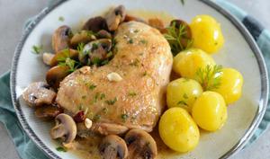 Poulet aux champignons, noisettes et huile d'olive