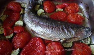 Truite au four et tomates, poivrons, courgette
