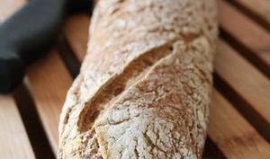 Levain et pain au levain sans gluten