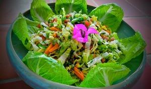 Salade de lettuce, pois chiche et fèves fraîches